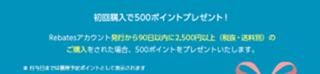rebates500camp_thumb1