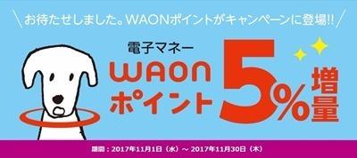 waon5pa201711dotmoney