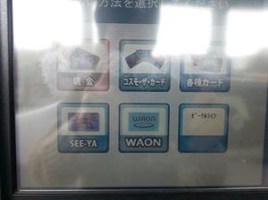 waonoil2